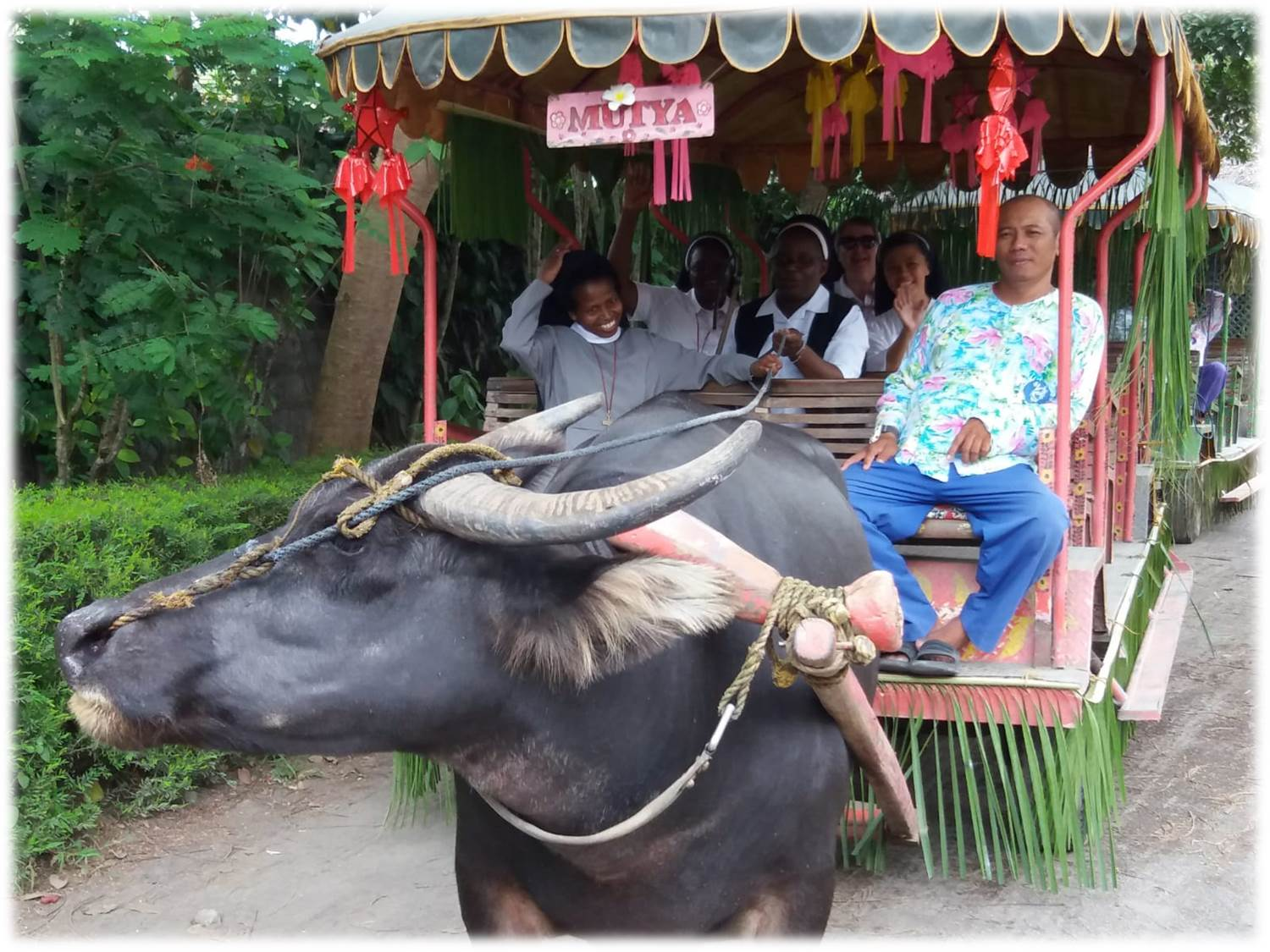 phil carabao ride